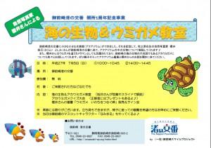 海の生物&ウミガメ教室